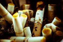 Closeup shot of burnt cigarette butts Royalty Free Stock Photos