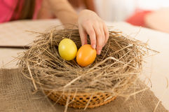 Closeup shot of child hand picking Easter egg from the nest Stock Images