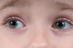 Closeup shot of eyes Royalty Free Stock Photo