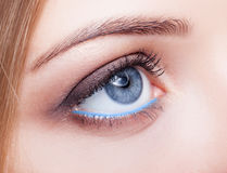 Closeup shot of female eye with day makeup Royalty Free Stock Images