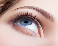 Closeup shot of female eye with day makeup Royalty Free Stock Photo