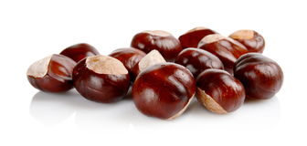 Closeup shot few chestnuts isolated on white background Stock Photography