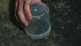 Closeup shot of person capturing and releasing arachnid. Closeup shot of person capturing small arachnid inside small, plastic container than releasing it stock video footage