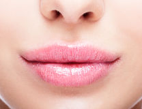 Closeup shot of plump female lips Royalty Free Stock Photography