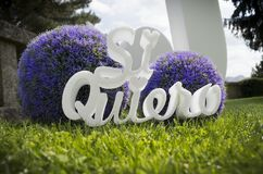 Closeup shot of a Spanish Si Quiero sign with a wedding agreement  meaning near flower decoration