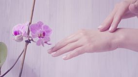 Closeup shot of tender woman hands apply skin cream. light background with violet orchid. Beautiful hands with elegant stock footage