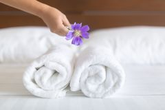 White hotel bed sheets and towel set. maid cleaning bed. Room service. Closeup shot of white bundles of towels being placed for hotel guests on their made be Royalty Free Stock Photo