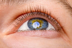 Closeup shot of woman eye - looking up. Human blue eye with reflection Stock Image