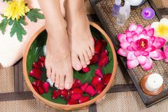 Closeup shot of a woman feet dipped in water with petals in a wo. Oden bowl. Beautiful female feet at spa salon on pedicure procedure Royalty Free Stock Photos