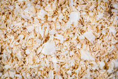 Closeup shot of wood chips in a pile Stock Images