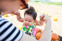 Mother and child choosing a pumpkin at the local pumpkin patch for the holidays. Closeup shot of 1 yo asian baby and her mother playing in a pumpkin patch Stock Images