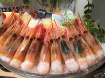 Closeup of shrimp sashimi. Served with a full of ice glass bowl at a Japanese restaurant stock image