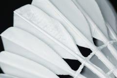 Closeup of shuttlecock badminton sport stock photo