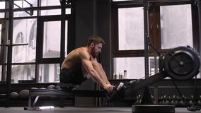 Closeup side view of adult motivated athletic shirtless man using rowing machine and making resistance training indoors. In the gym stock footage
