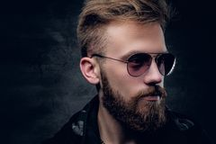 Side view of bearded male in sunglasses. Closeup side view of bearded male in sunglasses on grey vignette background Royalty Free Stock Photos