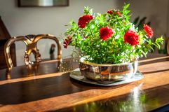 Closeup of silver flowerpot in living room. On a wooden table in a sunny afternoon, orange, arrangement, background, beautiful, bouquet, color, decoration royalty free stock image