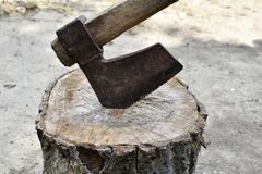 Axe in stump. Closeup of a single bit axe with hickory handle royalty free stock image