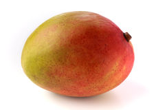 Closeup of a single red and yellow mango. On its side on a white background Stock Photography