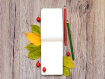 Closeup of sketchbook and pencils, decorated with autumn yellow leaves and berries. Top view, flat lay Royalty Free Stock Photos
