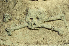 Closeup of skull on a gravestone Royalty Free Stock Photo