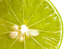 Closeup slice of  lime fruit. Royalty Free Stock Images