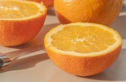 Closeup of sliced oranges Stock Images