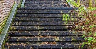 Closeup of a slippery staircase in autumn season, outdoor architecture, stairs in the middle of nature. A closeup of a slippery staircase in autumn season royalty free stock images