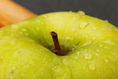 Closeup small green apple Stock Image