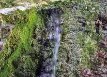 Closeup of small stream of water flowing from mountain shallow c Royalty Free Stock Photos