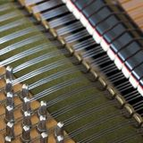 Snares pins and mutes inside old bechstein grand piano. Closeup of snares pins and mutes inside old bechstein grand piano Stock Image
