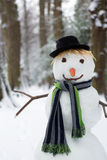 Closeup snowman Stock Photos