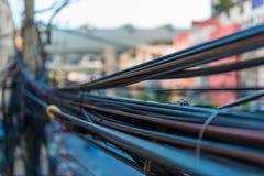 Closeup som hänger på måfå trådar på elektriska poler Royaltyfria Foton