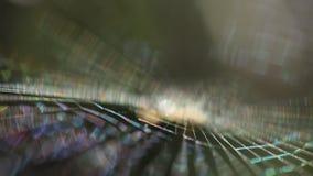 Closeup som skjutas av spindelrengöringsduk arkivfilmer