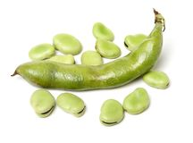 Closeup of some broad bean pods with the beans inside. Isolated  on a white background Stock Image