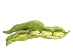 Closeup of some broad bean pods and beans on white. Background stock images
