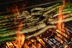 Barbecuing calcots, onions typical of Catalonia Royalty Free Stock Photo