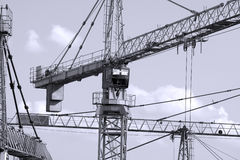 Closeup of some cranes Royalty Free Stock Photography