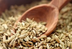 Fennel seeds. Closeup of some fennel seeds with wooden spoon Stock Image
