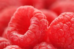 Fresh Raspberry. Closeup of some fresh Raspberries Stock Images