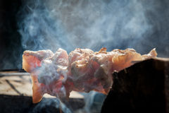 Closeup of some meat skewers being grilled in a barbecue Stock Images