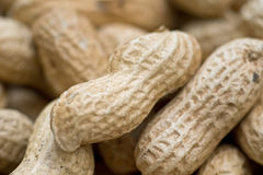 Closeup of some peanuts Stock Photography