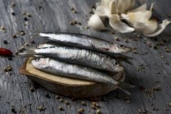 Raw sardines on a rustic wooden table Stock Image