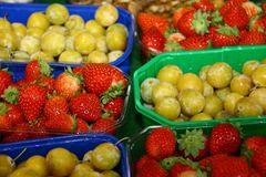 Closeup of some strawberries and plums, presented in baskets stock images