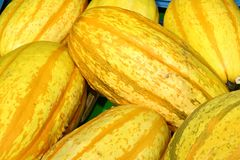 Closeup of some yellow pumpkin, royalty free stock photo