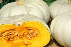 Closeup of some yellow pumpkins, cutted stock photography