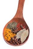 Closeup spice mix Stock Images