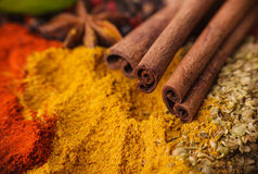 Closeup of spices composition Stock Images