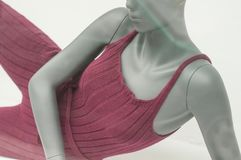 Sport clothes on mannequin in fashion store showroom. Closeup of sport clothes on mannequin in fashion store showroom Royalty Free Stock Image