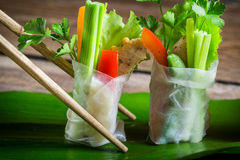 Closeup of spring rolls with vegetables Stock Photos