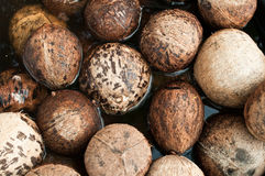 Closeup of stack coconut shell Stock Images